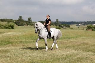 Horse Pics Summer 2010 126